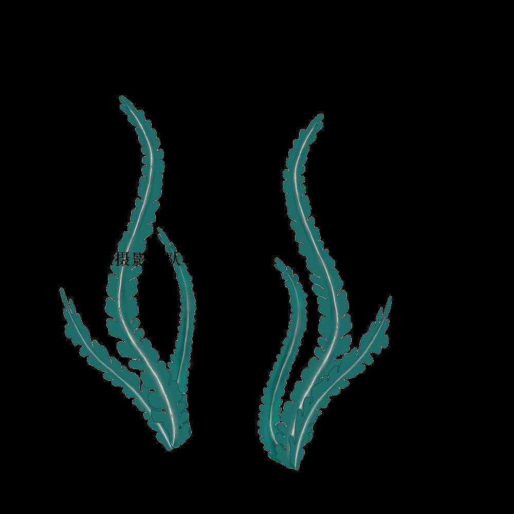 海藻--手绘原稿 |艺人摄影|化妆造型|广告摄影|商业摄影|北京商业摄影